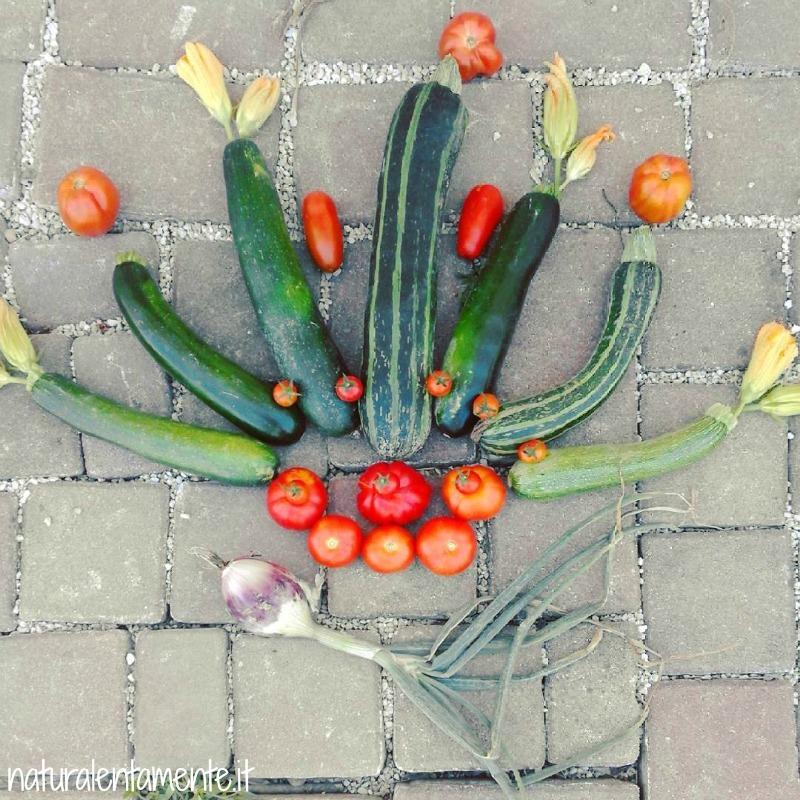 mandala di verdure