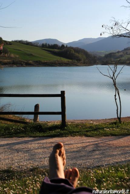 1 decrescita - piedi lago