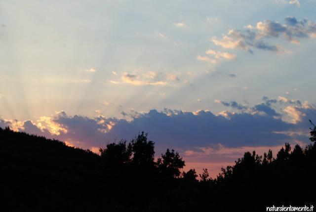 tramonto rosa orsa minore