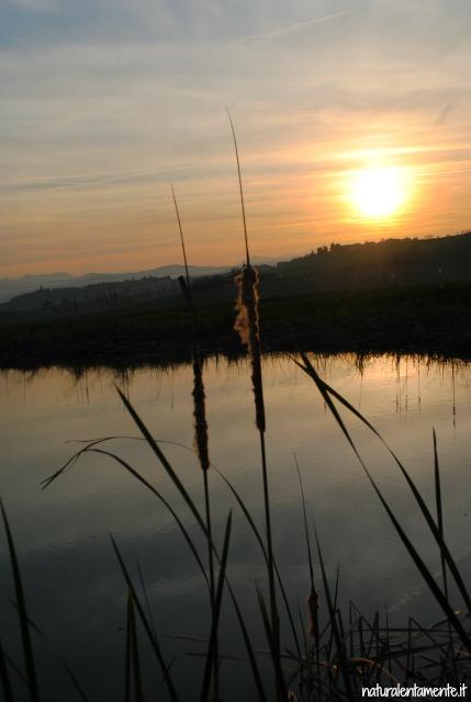 tramonto primaverile lago