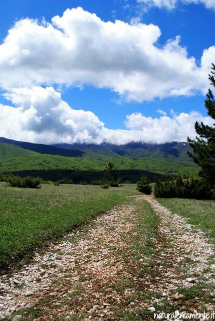 4 decrescita -montagna