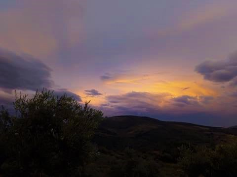 tramonto d'oro